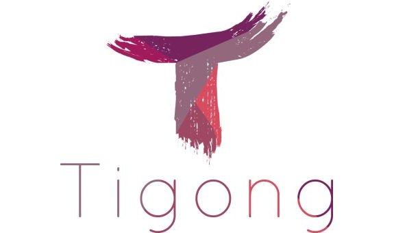 Tigong Commerce GmbH