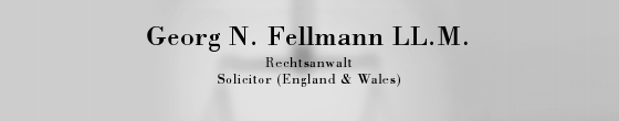 Fellmann Georg N.